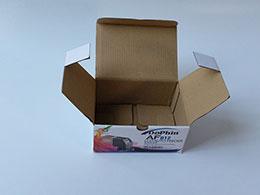 In hộp bồi caston AF012